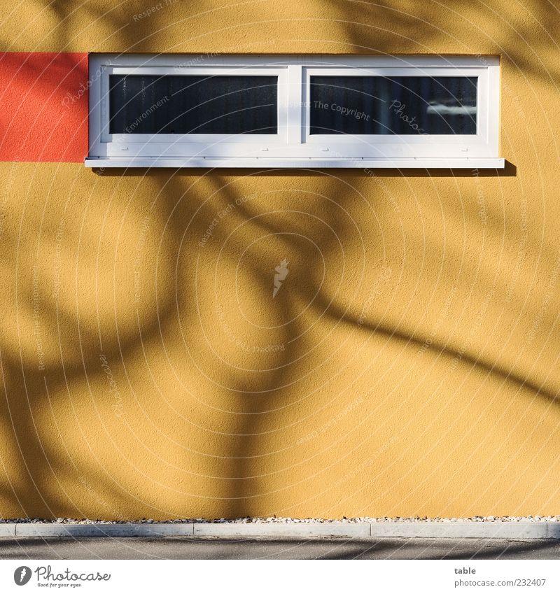 Camouflage weiß schwarz Farbe Haus Fenster Wand Architektur Stein Mauer Gebäude orange braun Glas Fassade ästhetisch neu