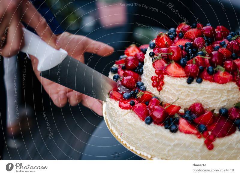Beerenkuchen II Lebensmittel Frucht Kuchen Dessert Süßwaren Kirsche Blaubeeren Erdbeeren Festessen Teller Messer Lifestyle elegant Stil Design Freude harmonisch