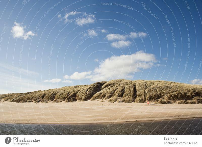 Straaaaaand. Himmel Natur blau Wasser Pflanze Meer Strand Freude Wolken gelb Erholung Sand Küste braun Wellen Wind