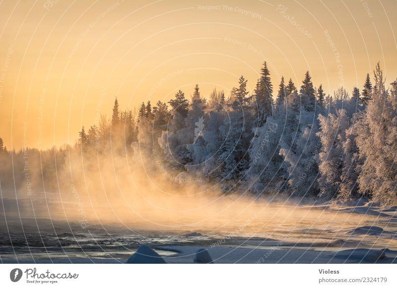 -28° III Finnland Schnee Schneefall Eis gefroren Rovaniemi Nebel Sonnenuntergang orange Wald Tanne weiß Fluss kalt Winter