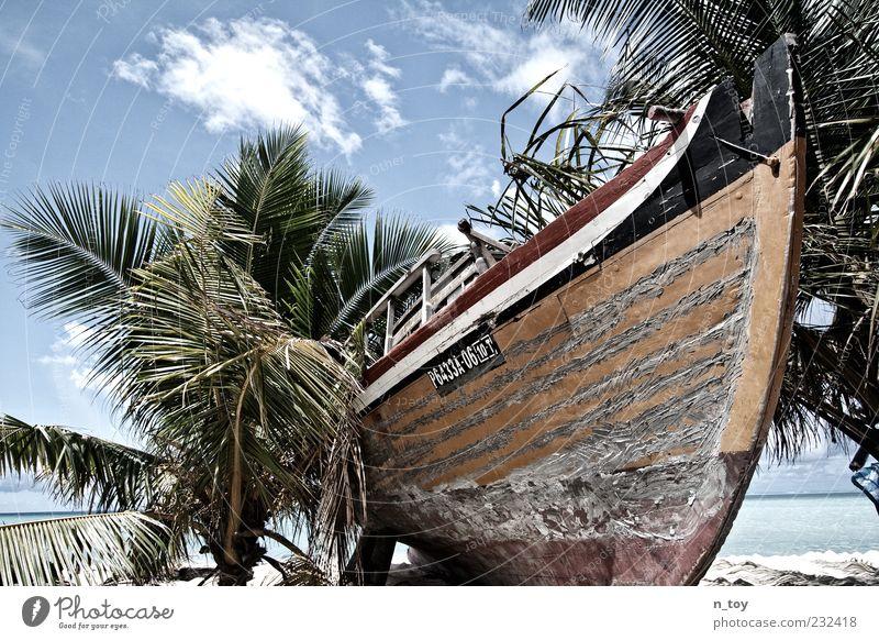 Ausgedient Ferien & Urlaub & Reisen Tourismus Sommer Sommerurlaub Strand Meer Himmel Wolken Palme Küste Fischerboot alt stagnierend Vergänglichkeit Malediven