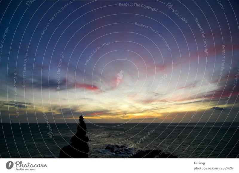sunset, again. schön Ferien & Urlaub & Reisen Sommer Meer Ferne Erholung Freiheit Stein Küste Felsen Reisefotografie Abenddämmerung Fernweh Formation Neuseeland