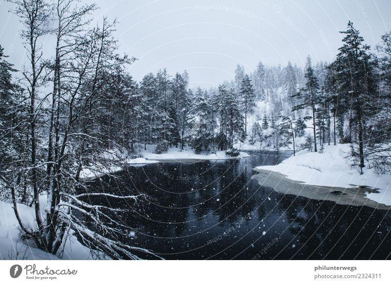 See und Wald im Winter bei Schneefall in Norwegen Ferien & Urlaub & Reisen Ausflug Abenteuer Ferne Freiheit Expedition Natur Landschaft Wasser Himmel Klima