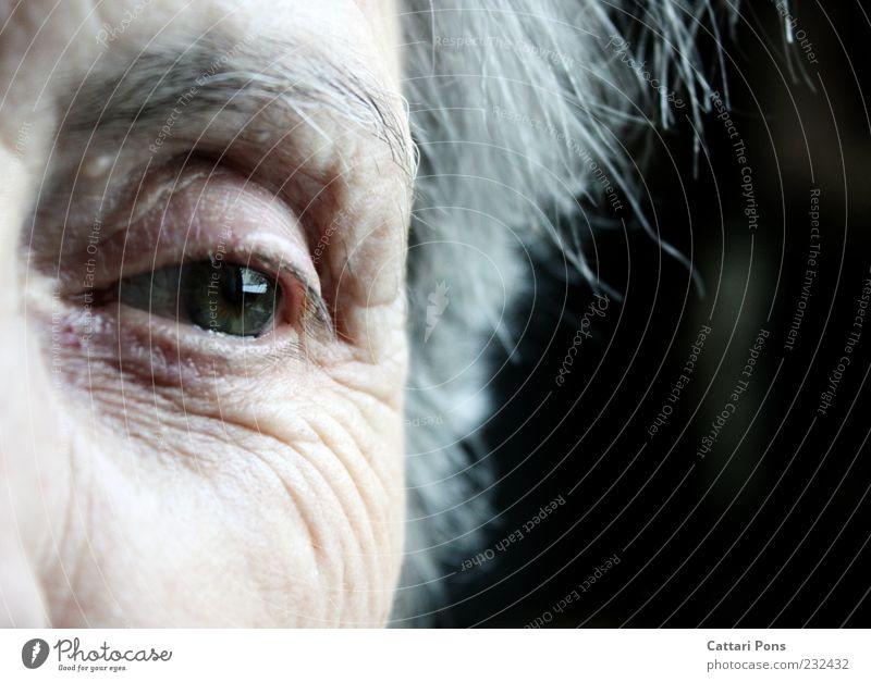 Nie verlor ich Dich im Herzen! Mensch Frau alt weiß grün Einsamkeit Auge Leben grau Denken träumen Zeit Senior Haut natürlich beobachten