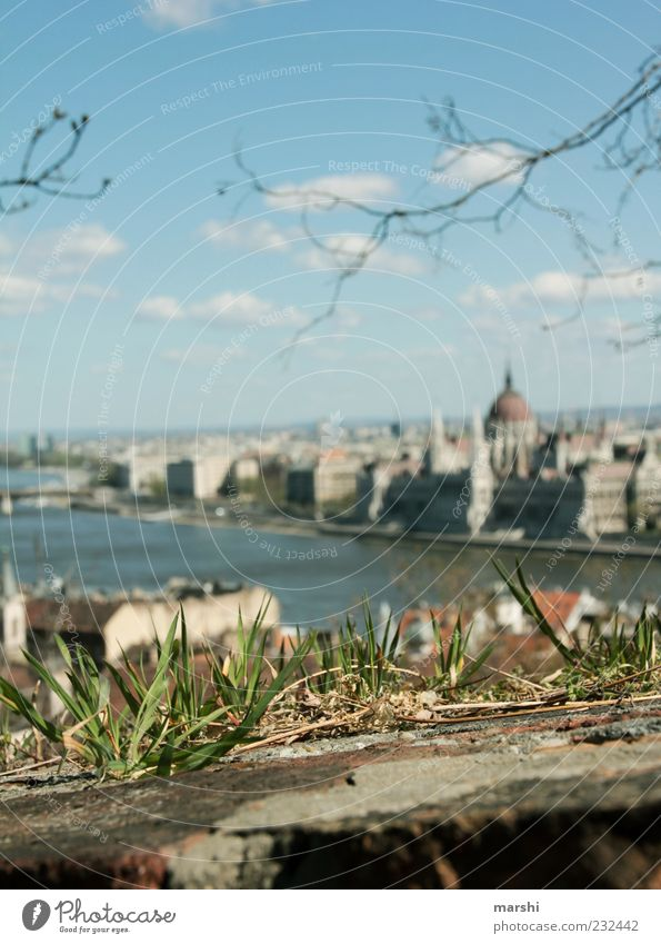Aussicht Natur Pflanze Gras Hauptstadt Stadtzentrum Altstadt Haus Bauwerk Gebäude Mauer Wand Sehenswürdigkeit Wahrzeichen Denkmal grün Budapest Ungarn