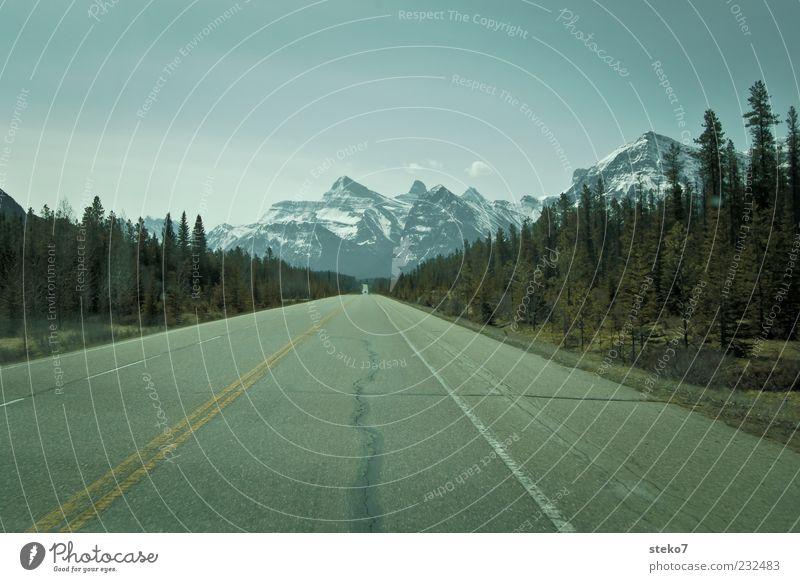 Fernstraße Wolkenloser Himmel Horizont Berge u. Gebirge Schneebedeckte Gipfel Straße fahren Beginn Einsamkeit Freiheit Ferne Kanada Icefield Parkway Fernweh