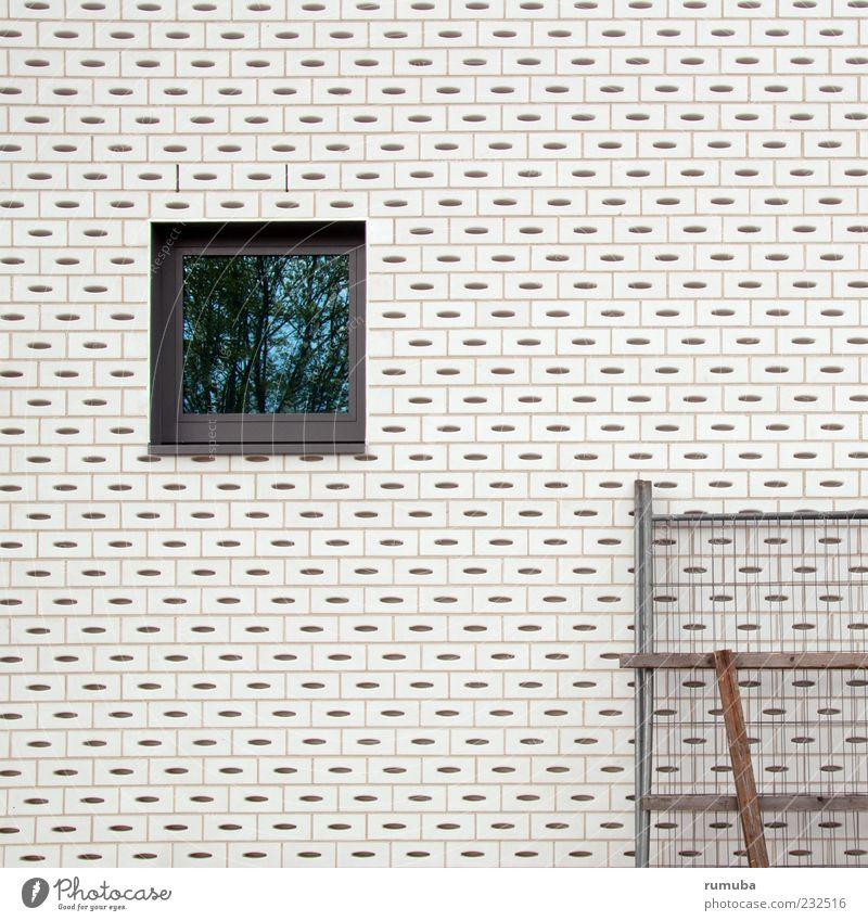 Blick ins Grüne. weiß Haus Fenster Wand Architektur Stein Stil Mauer Gebäude Glas Fassade Autofenster Beton Baustelle Bauwerk Identität