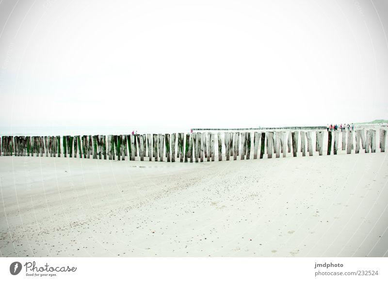 Strand Wellenbrecher Sommer ruhig Erholung Menschengruppe Sand Landschaft hell Küste Umwelt Freizeit & Hobby Meer Nordsee Sommerurlaub Buhne Holzpfahl