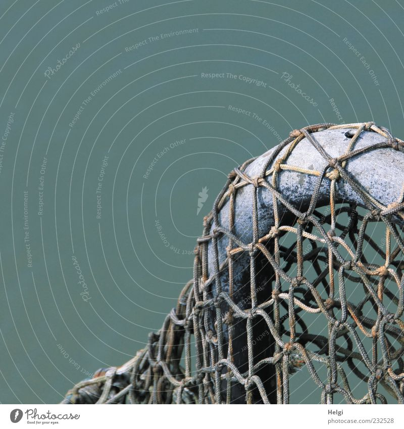 im Netz... blau Meer ruhig dunkel grau Metall Linie braun Ordnung ästhetisch authentisch einzigartig einfach Kunststoff Netz dünn