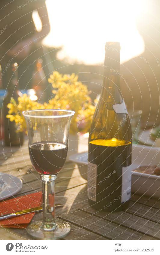 Summer Wine Lebensmittel Getränk Alkohol Wein Glas ästhetisch Fröhlichkeit Lebensfreude Frühlingsgefühle Weinflasche Weinglas Forsythienblüte blenden umgänglich