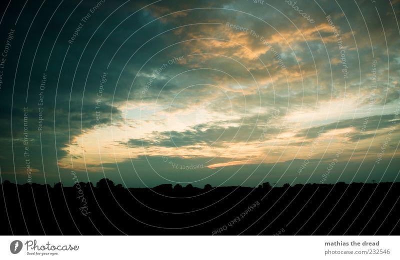 SCHÖNEN ABEND NOCH Umwelt Natur Landschaft Himmel Wolken Nachthimmel Schönes Wetter Baum ästhetisch bedrohlich fantastisch schön Idylle Wolkenloch schimmern
