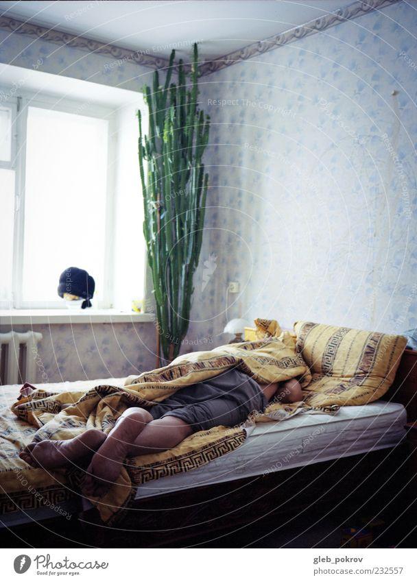 Dokument #Baum Lifestyle Wohnung Dekoration & Verzierung Möbel Bett Schlafzimmer Mann Erwachsene Leben Haut Beine Fuß 1 Mensch schlafen authentisch gut blau