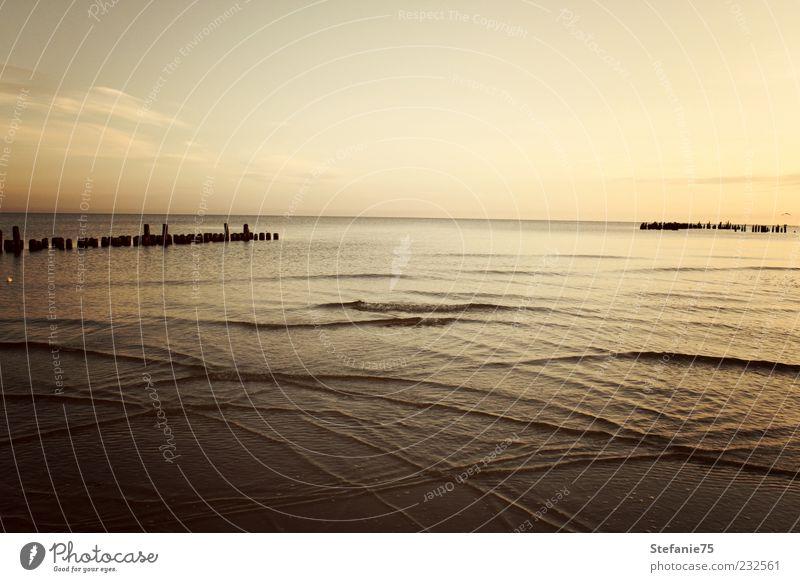 Natur Wasser schön Himmel Meer Sommer Freude Strand Einsamkeit Ferne Denken Stimmung Küste Wellen gold Hoffnung