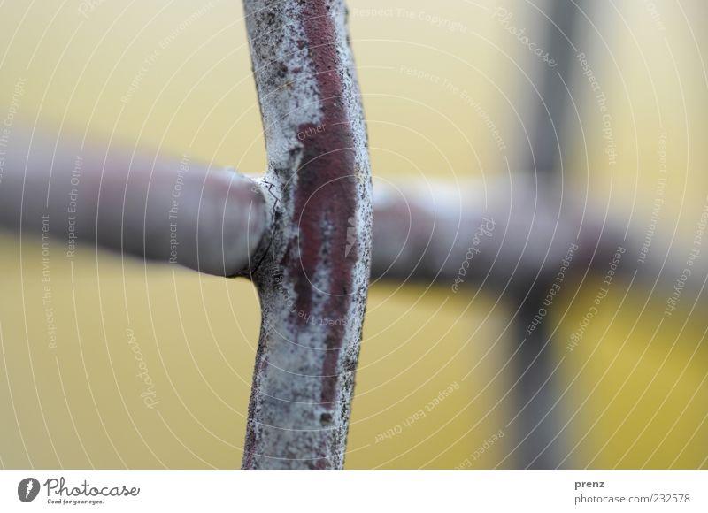 Gitter Kreuz Linie grau Zaun Metall Stahl Stab Barriere gekreuzt Nahaufnahme Makroaufnahme Farbfoto Außenaufnahme Menschenleer Hintergrund neutral Tag