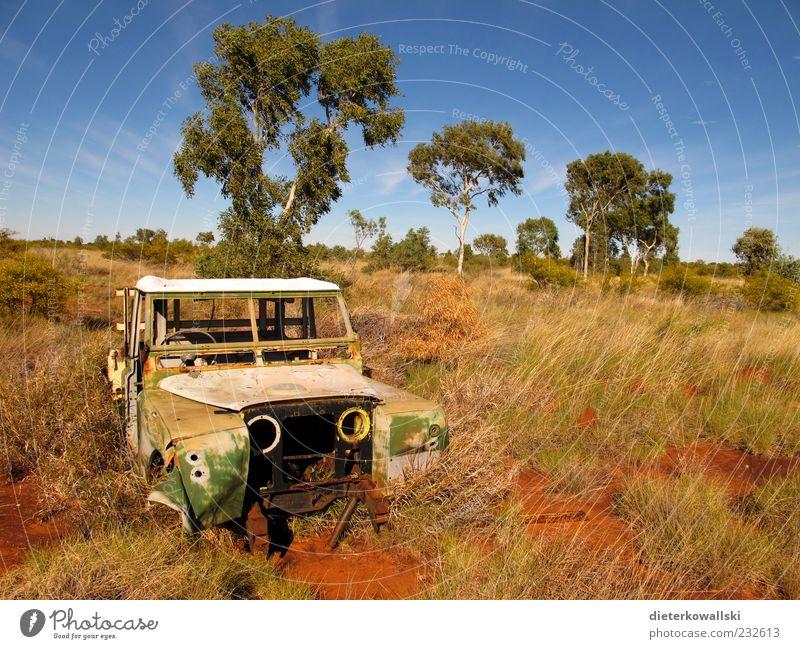 Autowrack Autofahren Fahrzeug PKW Rost Ende Ferien & Urlaub & Reisen kaputt alt Menschenleer Wandel & Veränderung Australien Outback Vergänglichkeit Umwelt