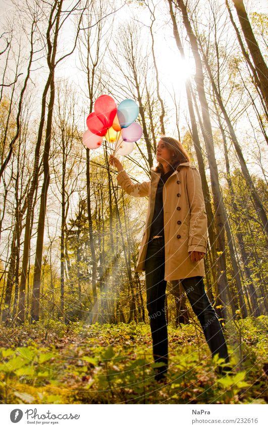 Lightroom Mensch Natur Jugendliche Baum Pflanze Sonne Sommer ruhig Wald Umwelt Glück Frühling Feste & Feiern Zufriedenheit Dekoration & Verzierung Luftballon