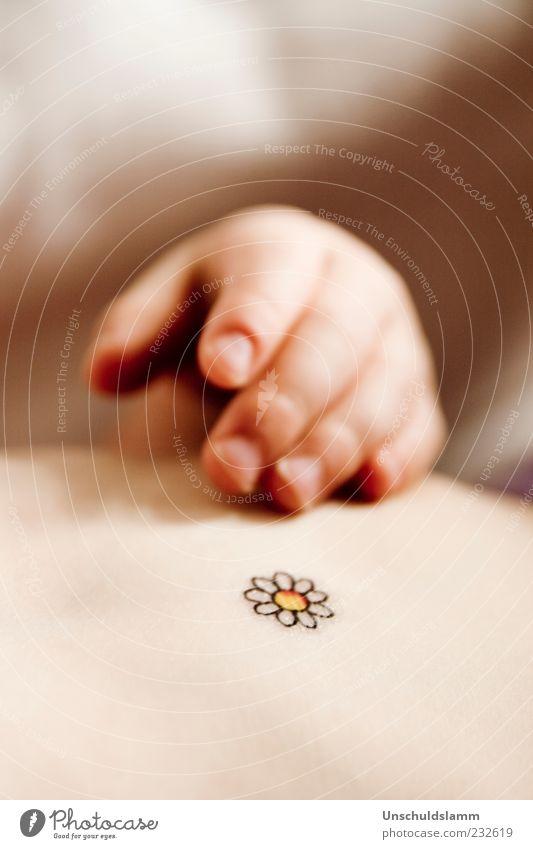 Frühlingsblümchen Kind Hand schön Blume ruhig Gefühle klein Glück träumen Stimmung hell Kindheit Baby Haut natürlich liegen