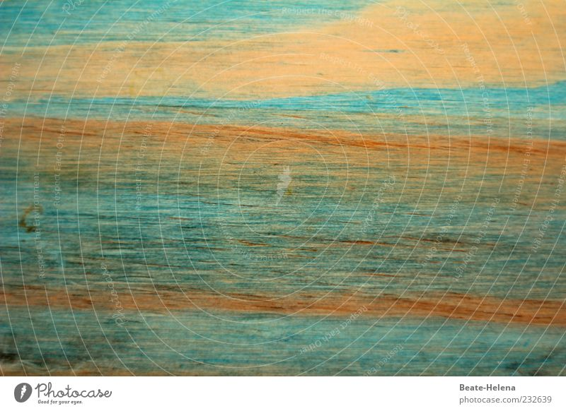 Zwielichtig Himmel Natur blau schön Farbe Sommer Wasser Umwelt Hintergrundbild Denken außergewöhnlich braun träumen Wellen Textfreiraum ästhetisch