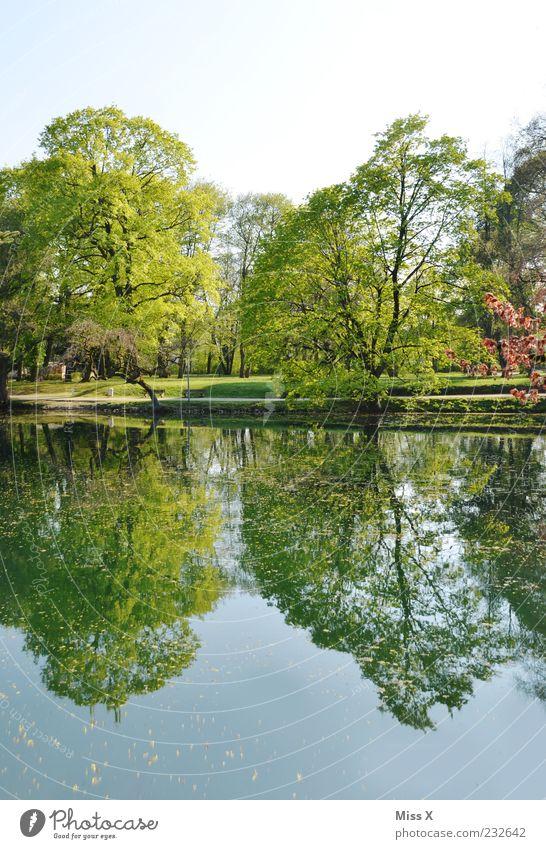 Spiegel Himmel Natur Wasser grün Baum Blatt See Park Schönes Wetter Seeufer Flussufer Baumkrone Teich Wasseroberfläche Wolkenloser Himmel Zweige u. Äste
