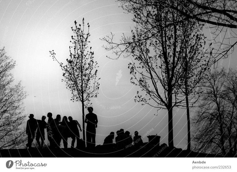 Drüben auf dem Hügel... Freude Sommer Feste & Feiern Mensch Leben Menschengruppe 18-30 Jahre Jugendliche Erwachsene Natur ästhetisch Fröhlichkeit Stimmung