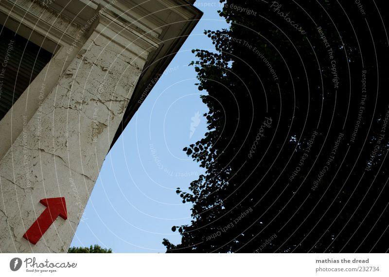 DA OBEN Himmel rot Blatt Haus Fenster Wand Mauer Gebäude Kunst Fassade Schilder & Markierungen Ecke Bauwerk Zeichen Pfeil Putz