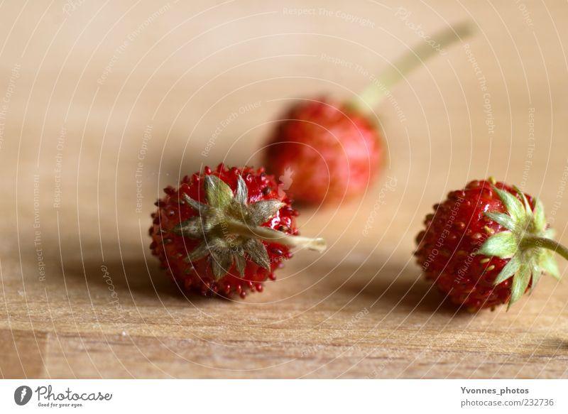 Fünfeinhalb Tage zur Erdbeerzeit Lebensmittel Frucht Erdbeeren Ernährung Bioprodukte Vegetarische Ernährung Slowfood Pflanze Holz frisch Gesundheit saftig süß