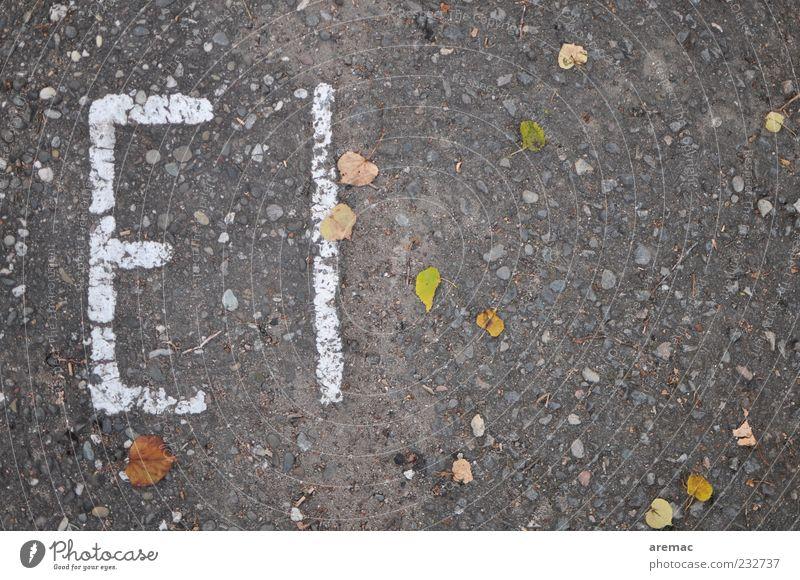 Passend zum Fest Ei Straße Zeichen Schriftzeichen grau Asphalt Ostern Farbfoto Außenaufnahme abstrakt Strukturen & Formen Menschenleer Textfreiraum rechts Tag