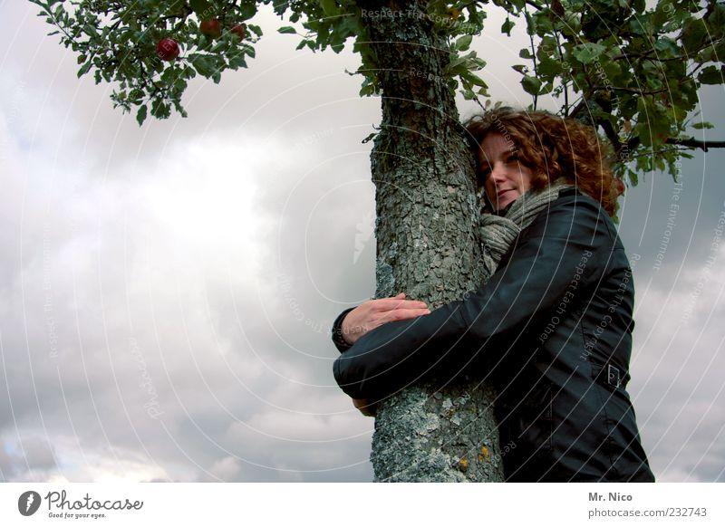 umweltschutz Frau Natur Baum Blatt Wolken Erwachsene Umwelt feminin Gefühle Holz träumen Freundschaft Wetter Klima Vertrauen Baumstamm