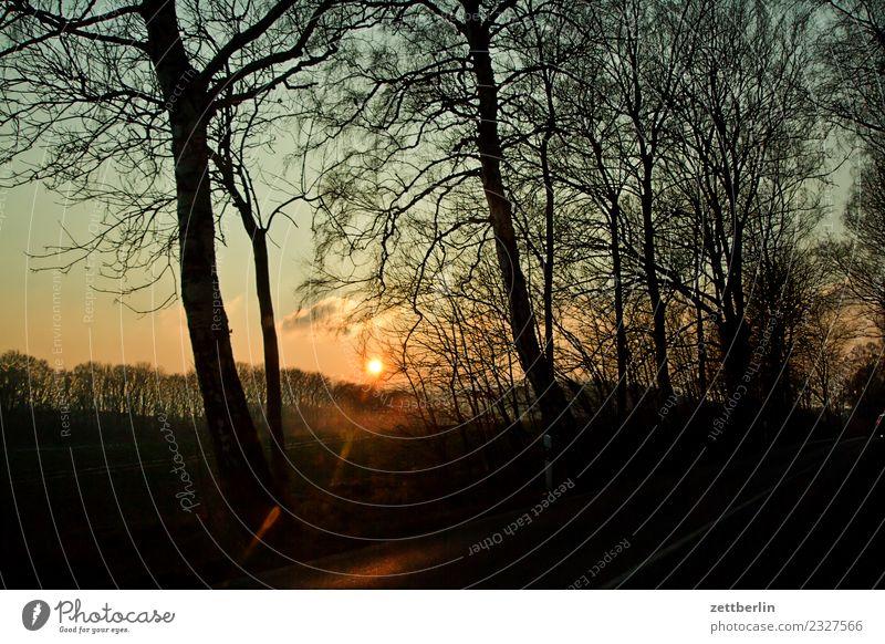 Sonnenuntergang/Lobbe Abend Dämmerung Erholung Feierabend Ferien & Urlaub & Reisen Himmel Himmel (Jenseits) Mecklenburg-Vorpommern Menschenleer mönchgut Natur