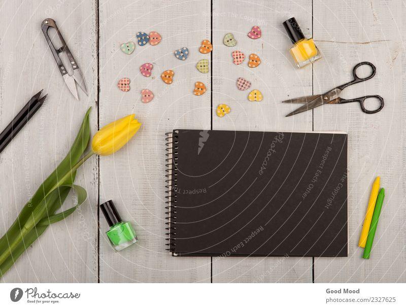 Pflanze Sommer Farbe grün weiß Blume schwarz Leben gelb Herbst Liebe natürlich Holz Kunst Textfreiraum Dekoration & Verzierung