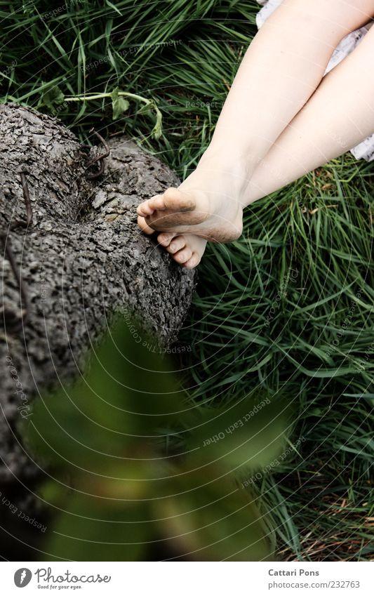whateverism. Erholung ruhig Beine Fuß Natur Pflanze Sommer Baum Gras Blatt Holz liegen dünn grün Gelassenheit geduldig dreckig Zehen Füße hoch Barfuß Naturliebe