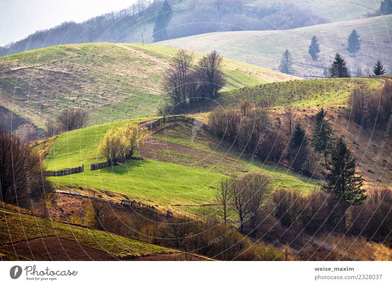 Grüne Hügel im Bergtal. Frühlingslandschaft Ferien & Urlaub & Reisen Tourismus Ferne Freiheit Sommer Berge u. Gebirge wandern Umwelt Natur Landschaft Erde