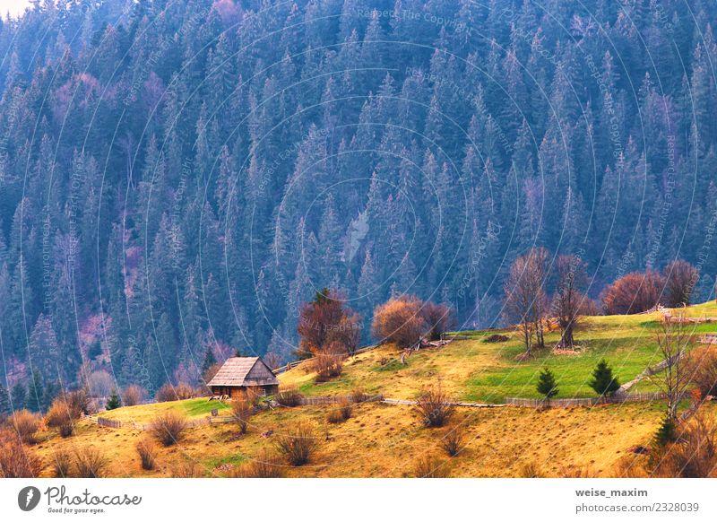 Natur Ferien & Urlaub & Reisen Sommer schön grün Landschaft Baum Haus Wald Berge u. Gebirge Umwelt Frühling Wiese natürlich Gras Garten
