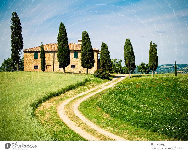 Toskana Ferien & Urlaub & Reisen Sommer Landschaft Sonne Baum Erholung Haus Ferne Umwelt Wand Gefühle Glück Mauer Tourismus Freiheit Stimmung