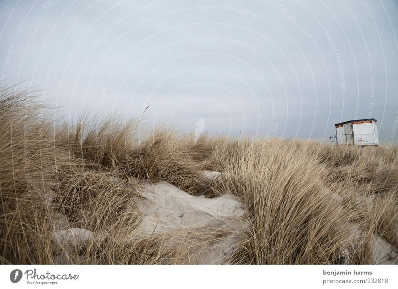 tag am meer #4 Natur Landschaft Sand Himmel Wolken schlechtes Wetter Küste Strand Ostsee Meer trist ruhig Farbfoto Außenaufnahme Menschenleer Strandposten