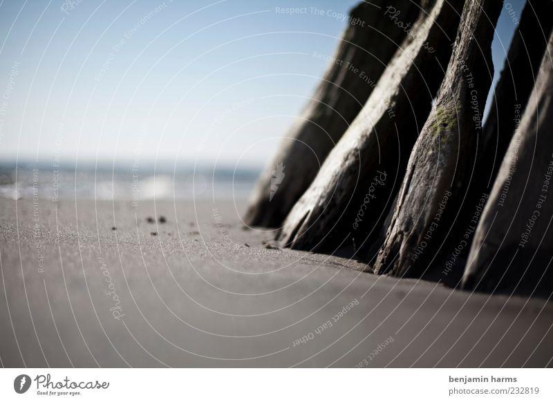tag am meer #5 Natur Meer Strand ruhig Landschaft Sand Küste Ostsee Blauer Himmel Perspektive Sandstrand Holzpfahl