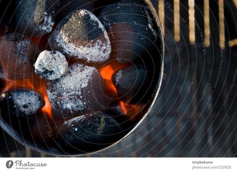 Vorglühen Grillen Feuer Schönes Wetter Glut Holzkohle beobachten warten heiß rot Vorfreude geduldig Energie mehrfarbig Außenaufnahme Nahaufnahme Menschenleer