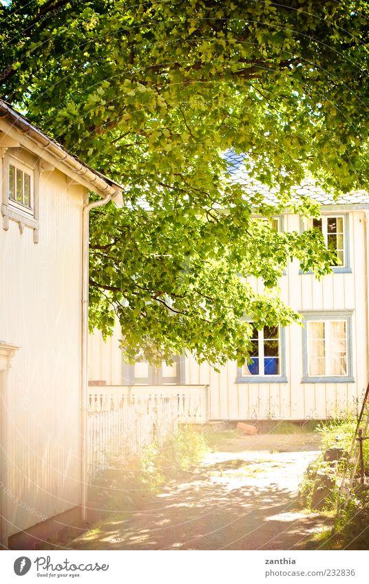 summer weiß Baum Sommer Blatt Haus Fenster Wege & Pfade Gebäude hell Zufriedenheit Fassade Häusliches Leben Idylle Dorf Baumkrone Gasse