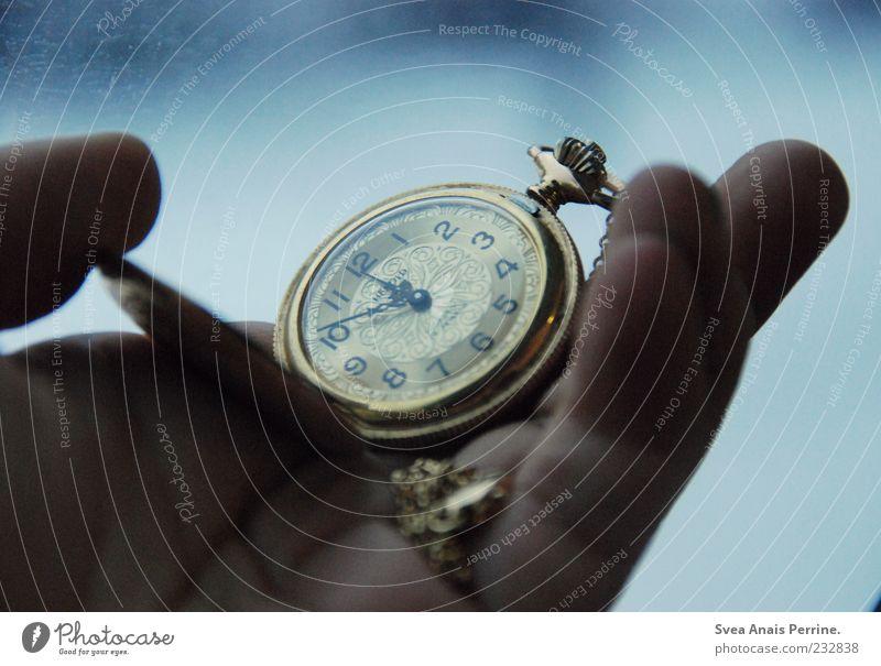 10 vor 12 Mensch Hand kalt Gefühle Stimmung Zeit elegant Gold Uhr außergewöhnlich Finger retro festhalten Zifferblatt Uhrenzeiger Sammlerstück