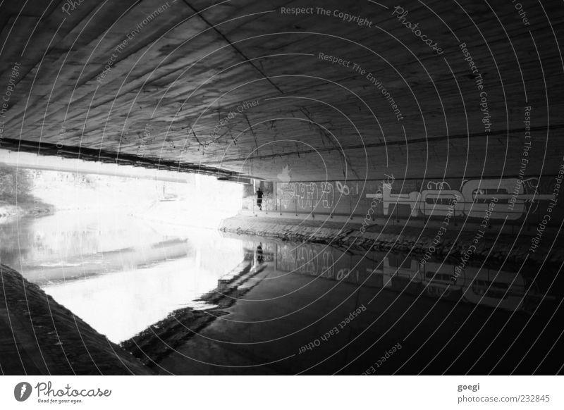 Am Fluss I Flussufer Bach Brücke Beton Wasser Graffiti dreckig Decke Glätte Spinngewebe Schwarzweißfoto Außenaufnahme Tag Reflexion & Spiegelung