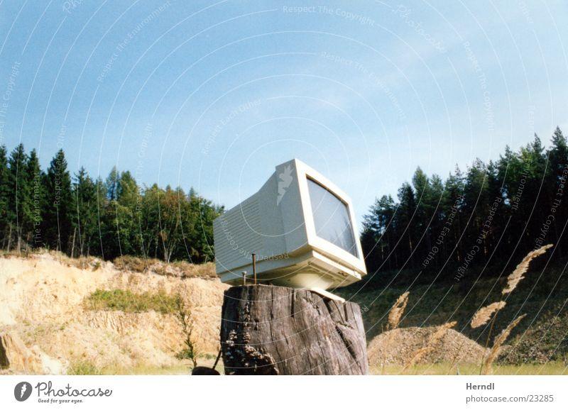 Einblick in die Natur Wald Technik & Technologie Aussicht Bildschirm Elektrisches Gerät