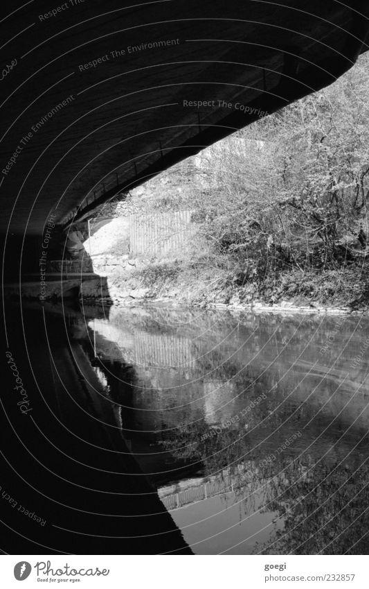 Am Fluss II Landschaft Wasser Pflanze Sträucher Brücke trist Schwarzweißfoto Außenaufnahme Menschenleer Reflexion & Spiegelung Flussufer Wasserspiegelung
