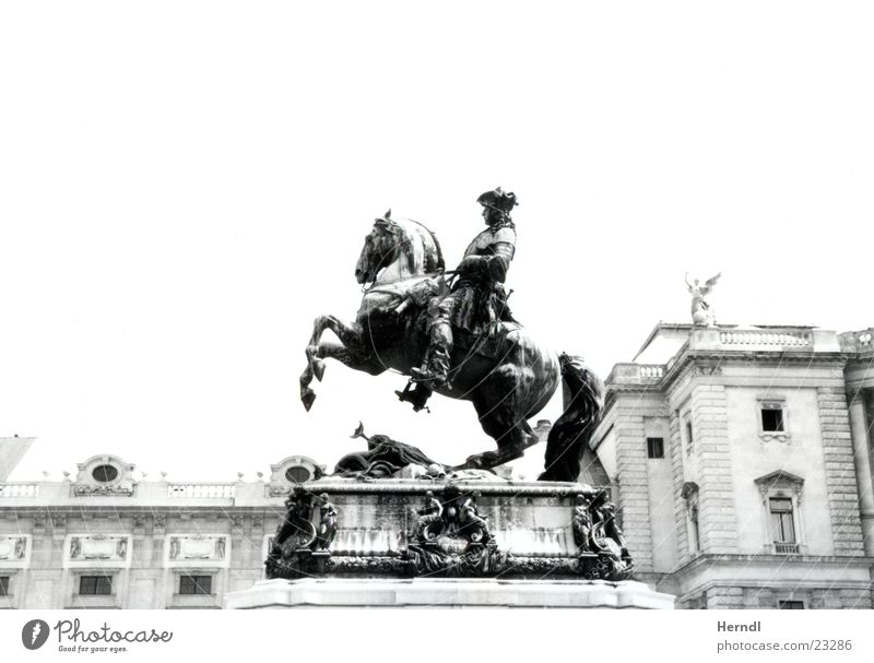 Der Reiter vor der Hofburg weiß schwarz Pferd Statue historisch König Wien Kunst