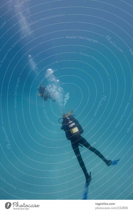 CHILL COMMUNICATION tauchen Taucher Wasser Meer Unterwasseraufnahme Frau Mann Mauritius unten Blase blau tief Meerestiefe Ferne Tourismus