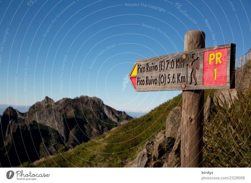 Der Wanderweg zu Madeiras höchstem Gipfel Freizeit & Hobby Ferien & Urlaub & Reisen Ausflug Insel Berge u. Gebirge wandern Natur Wolkenloser Himmel