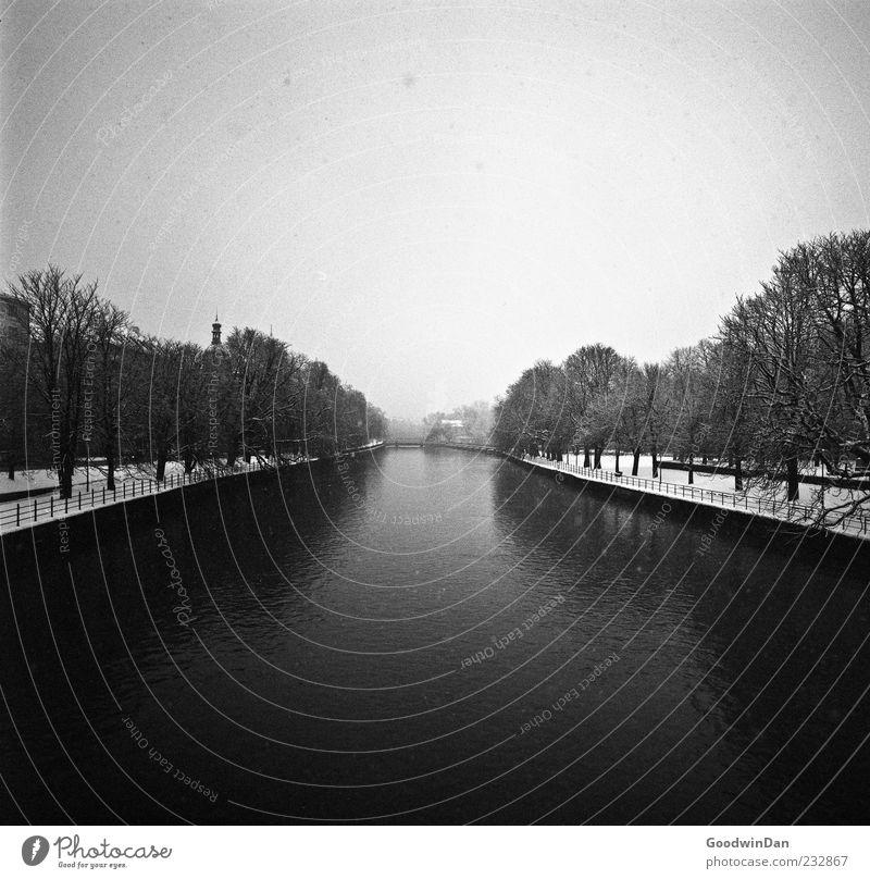 a winters tale Umwelt Natur Wasser Winter Klima Wetter Eis Frost Schnee Fluss Stadt authentisch einfach fantastisch frisch groß Unendlichkeit kalt trist viele