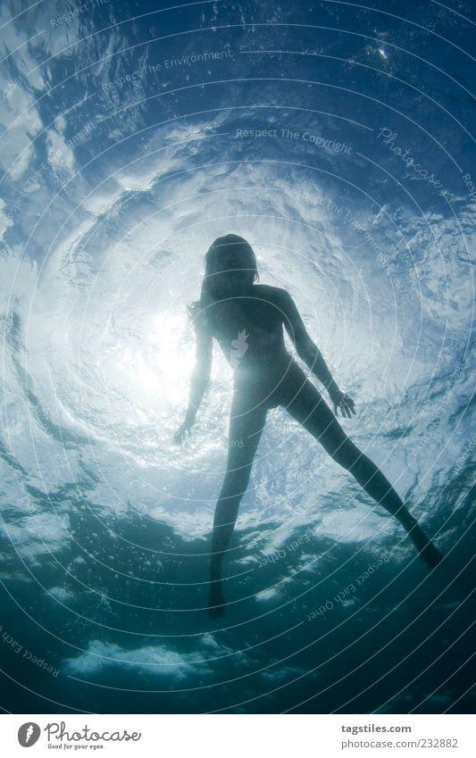 OBERFLÄCHLICH Frau Natur Wasser Ferien & Urlaub & Reisen Sonne Meer Erholung Schwimmen & Baden natürlich Reisefotografie Im Wasser treiben Schweben Oberfläche