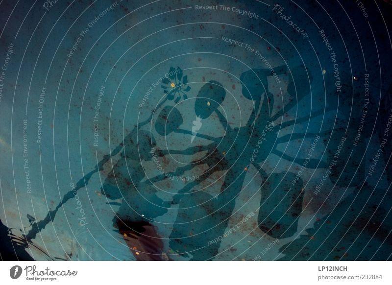 AM STER DAM blau Wasser kalt Bewegung Lampe Europa Hoffnung Brunnen Wunsch Flüssigkeit drehen Surrealismus Skulptur bizarr Wasseroberfläche Niederlande