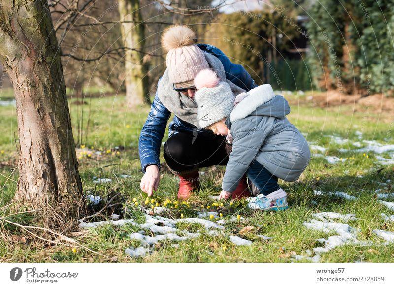 Frühlingsblümchen entdecken Frau Kind Mensch Pflanze blau grün Mädchen Erwachsene Wiese feminin Gras grau braun 45-60 Jahre Blühend