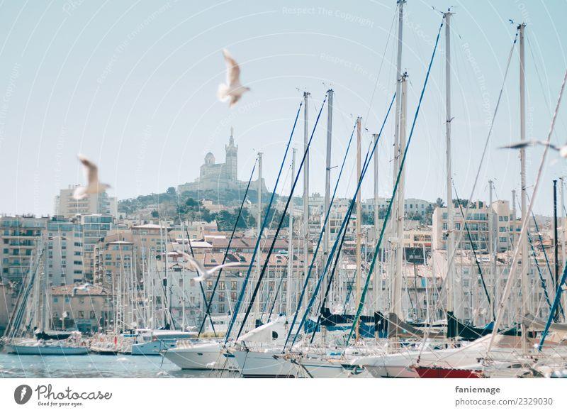 Marseille Stadt schön Sonne Reisefotografie Bewegung Tourismus Vogel fliegen Kirche authentisch Schönes Wetter malerisch historisch Postkarte Hafen mediterran